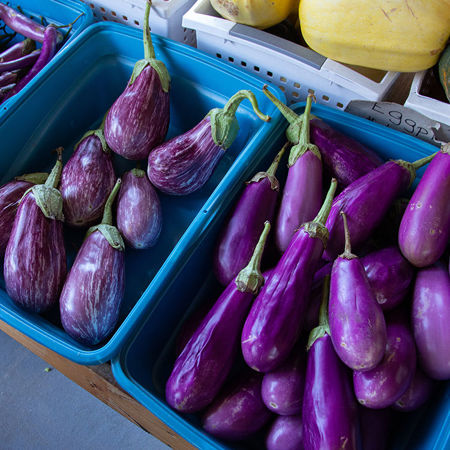 Picture for category Eggplants