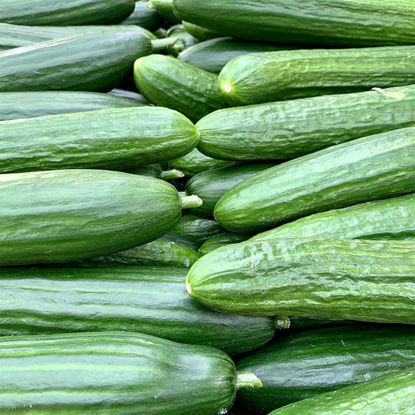 Picture of Cucumbers