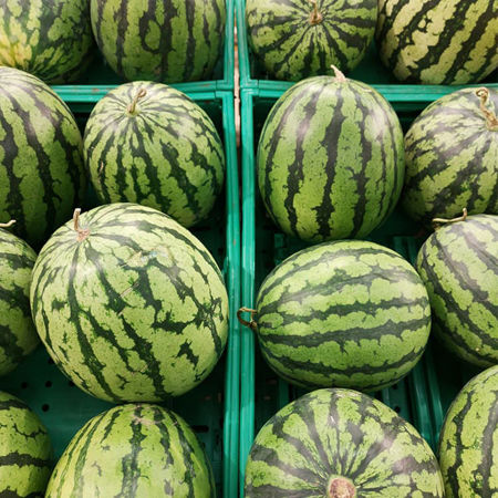Picture for category Watermelon