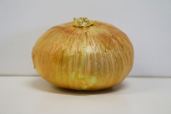 Picture of Spanish Onions